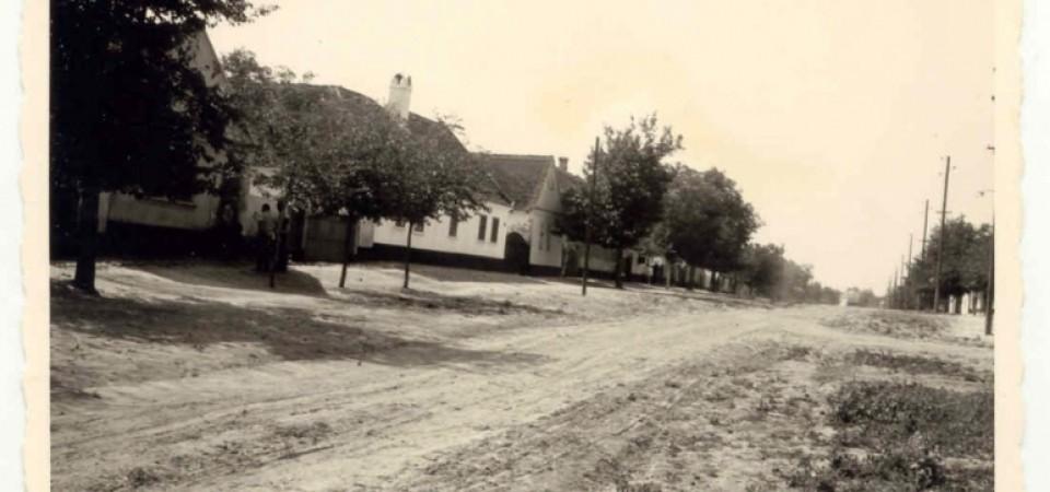 Na staroj fotografiji  iz Novih Banovaca vidi se Glavna ulica , prva polovina 20. veka.