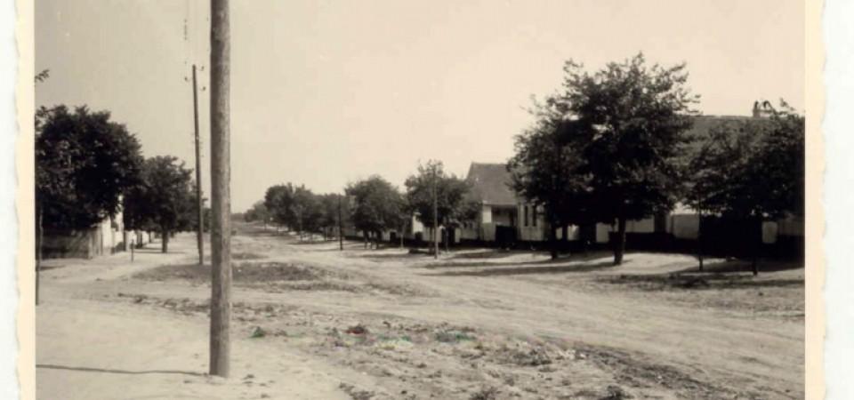 Na staroj fotografiji  iz Novih Banovaca vidi se Glavna ulica , prva polovina 20. veka. Sa sajta www.neu-banovci.de