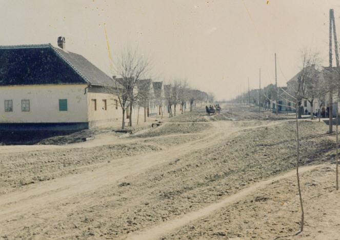 Na staroj fotografiji iz prve polovine 20. veke  vidi se Glavna ulica u  Novim Banovcima. Sa sajta www.neu-banovci.de