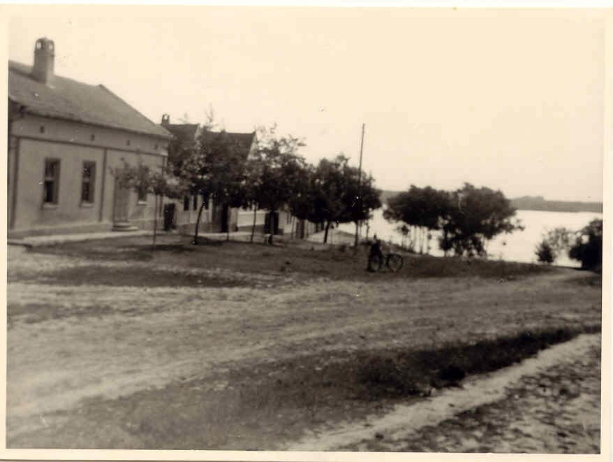 Na staroj fotografiji  iz Novih Banovaca vidi se ulica do Dunava , prva polovina 20. veka.Sa sajta www.neu-banovci.de