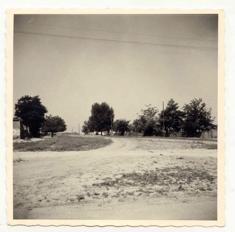 Na staroj fotografiji  iz Novih Banovaca vidi se jedna od ulica u mestu, prva polovina 20. veka.Sa sajta www.neu-banovci.de