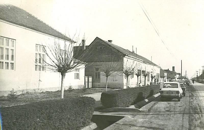 Na staroj fotografiji s druge polovine 20. veka vidi se centar sela Golubinci.