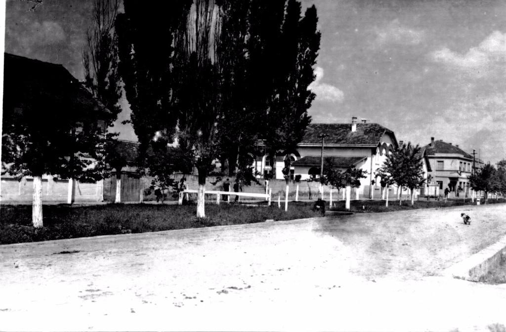 Na staroj fotografiji iz 1950.godine vidi se ulica Kralja Petra Prvo Oslobodioca.