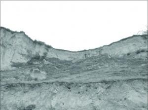 Sl.br.1- Visoka obala Dunava iznad lokaliteta Marina u Surduku