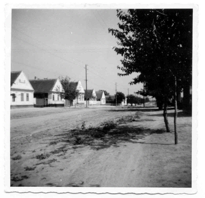 Glavna ulica, Novi Banovci, prva polovina XX veka