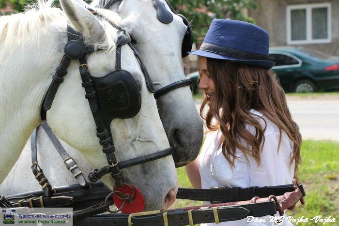 Ljubav prema konjima