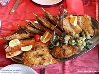Dunavska riba