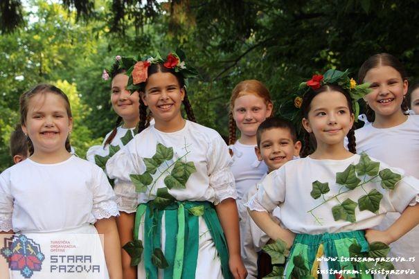 """Međunarodni festival dečijeg folklora """"Vidovdanski susreti"""", Stara Pazova"""