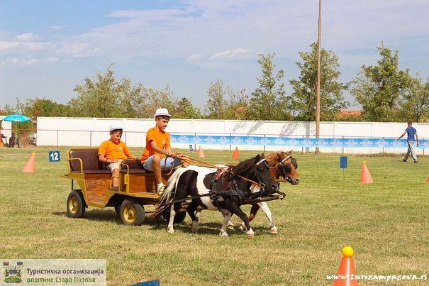 Fijakerijada - poni konji
