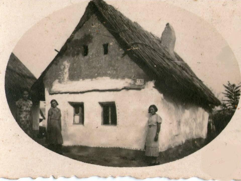 Izgled kuće, Novi Banovci, prva polovina XX veka