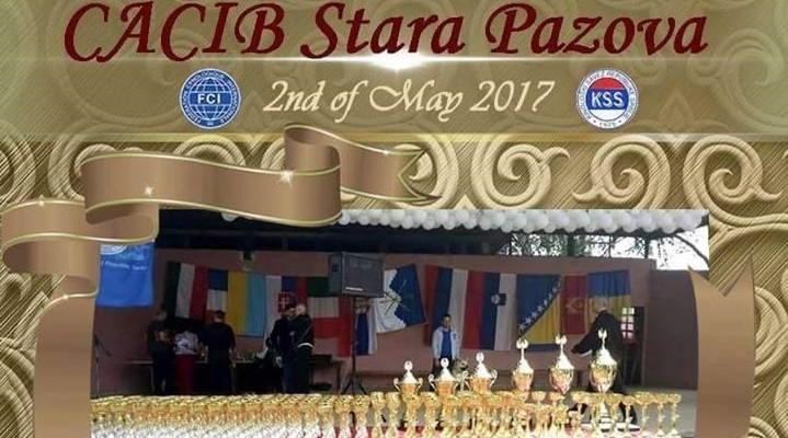"""Međunarodna izložba pasa svih rasa """"CACIB Stara Pazova 2017."""""""