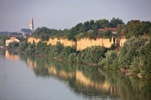 Die Ufer der Donau in Stari Banovci