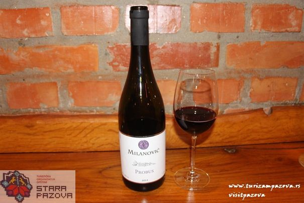 Das Weingut Milanović - Surduk